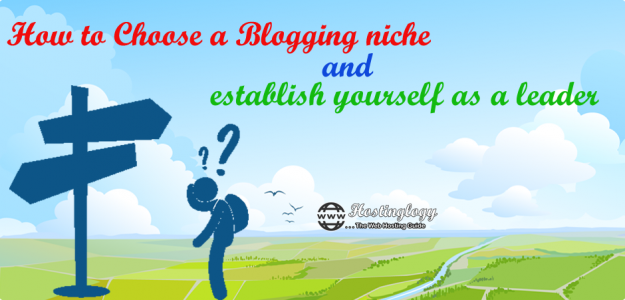 How to Choose a Blogging niche And establish yourself as a leader