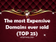 What is the highest price paid for a domain name?